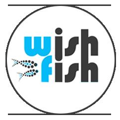 WishFish | Studio Graficzne
